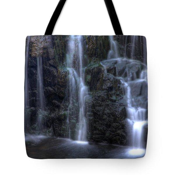 Silk  Tote Bag by Jeff Bord
