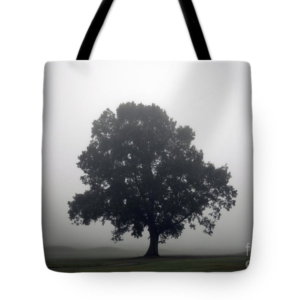 Simplicity Tote Bag by Amanda Barcon