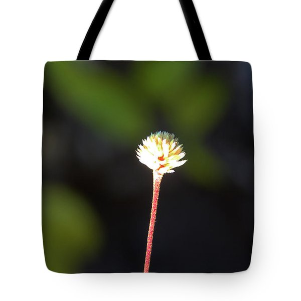 Tote Bag featuring the photograph Simplicity by Kerri Ligatich