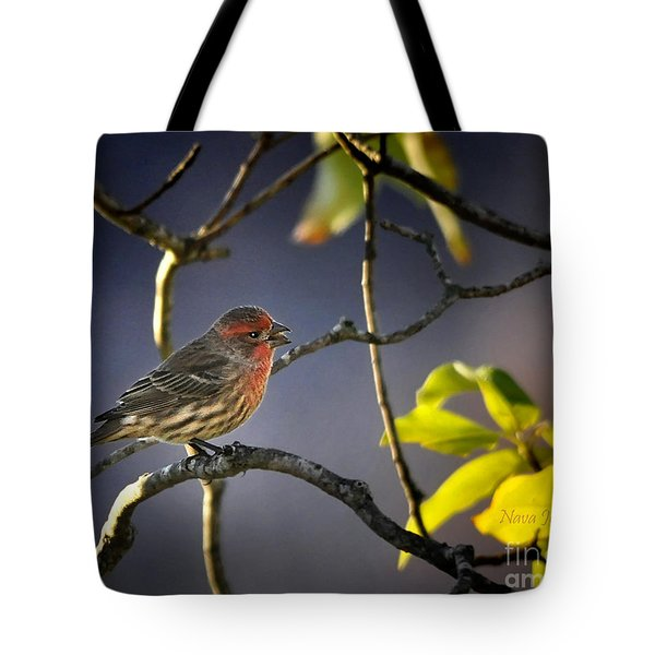 Tote Bag featuring the photograph Singing In The Morning by Nava Thompson