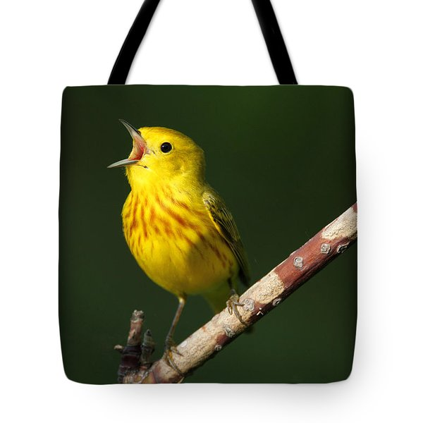 Singing Yellow Warbler Tote Bag