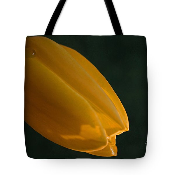 Tote Bag featuring the photograph Single Again by Sherry Hallemeier