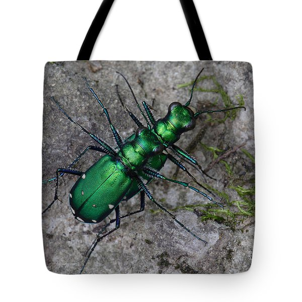 Six-spotted Tiger Beetles Copulating Tote Bag by Daniel Reed