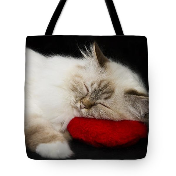 Sleeping Birman Tote Bag by Melanie Viola