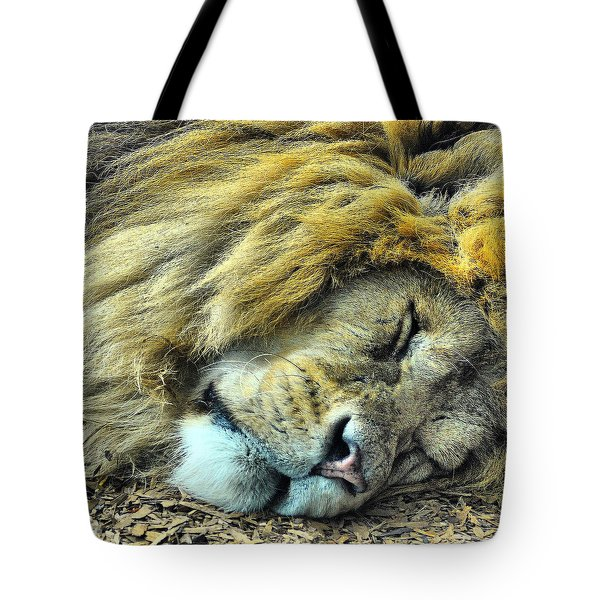 Sleeping Lion Tote Bag by Chris Thaxter