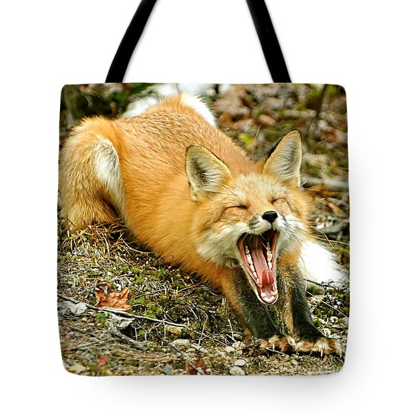 Tote Bag featuring the photograph Sleepy Fox by Rick Frost