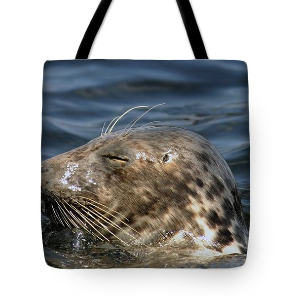 Sleepy Seal Tote Bag by Rick Frost