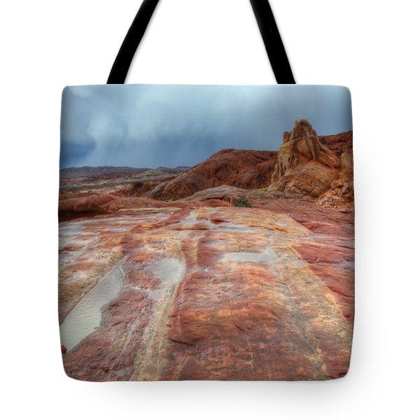Slickrock Tote Bag by Bob Christopher