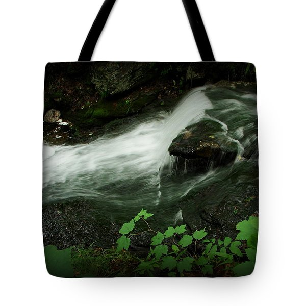 Slide Tote Bag by Priscilla Richardson