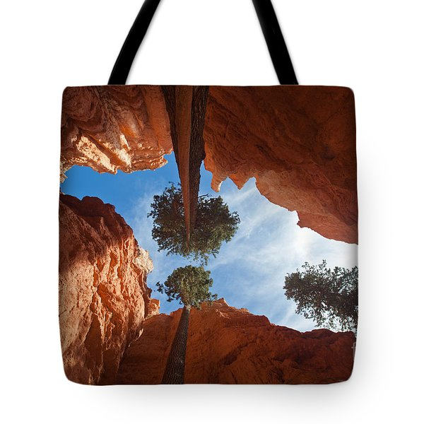Slot Canyon Tote Bag by Greg Dimijian