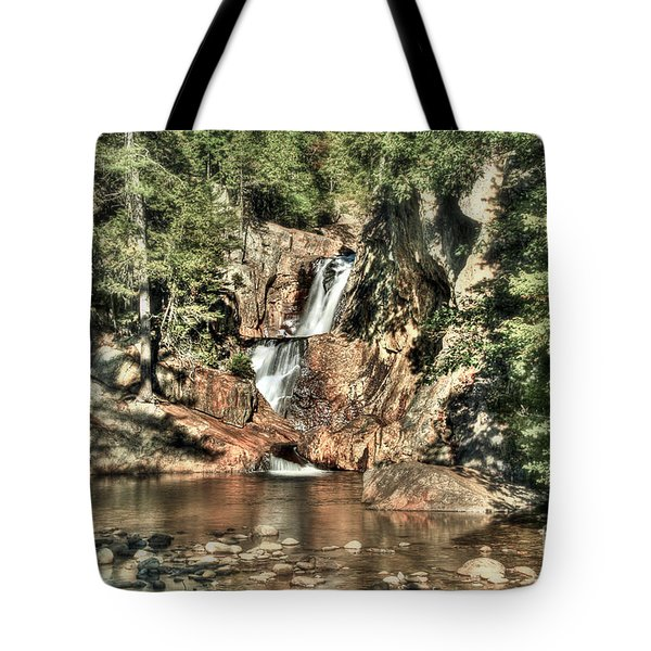 Small Falls Tote Bag by Brenda Giasson