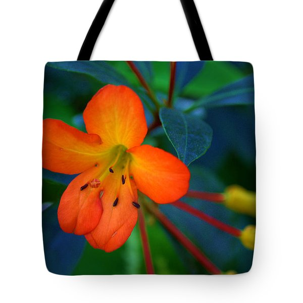 Tote Bag featuring the photograph Small Orange Flower by Tikvah's Hope