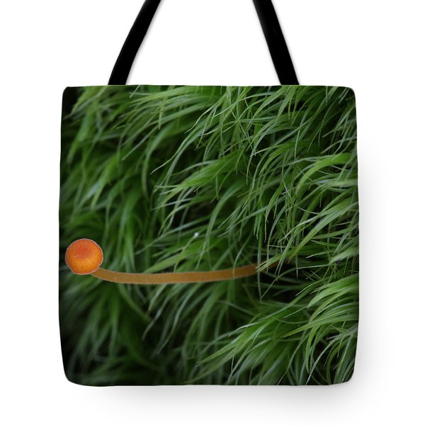 Small Orange Mushroom In Moss Tote Bag