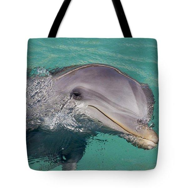 Smiling Atlantic Bottlenose Dolphin Tote Bag by Dave Fleetham