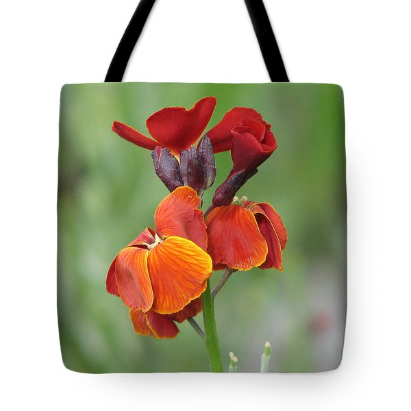 Tote Bag featuring the photograph Smooth And Silky by Chris Anderson