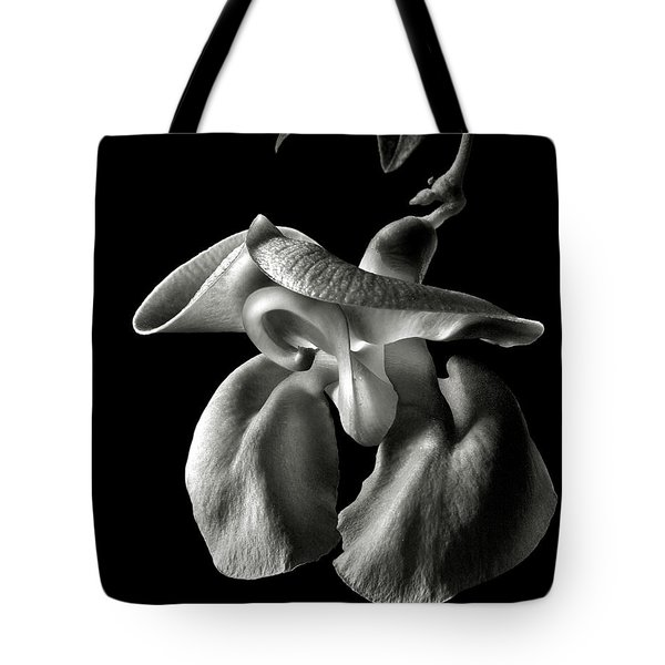 Snail Flower In Black And White Tote Bag