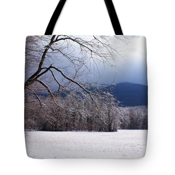 Tote Bag featuring the photograph Snow And Ice by Paul Mashburn