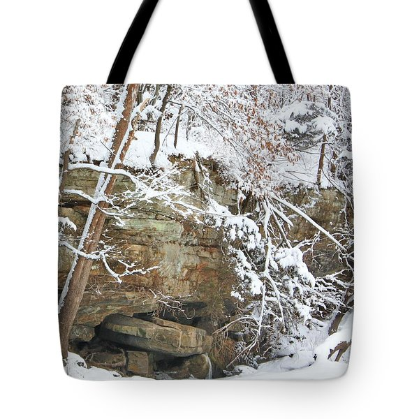 Snow And Sandstone Tote Bag