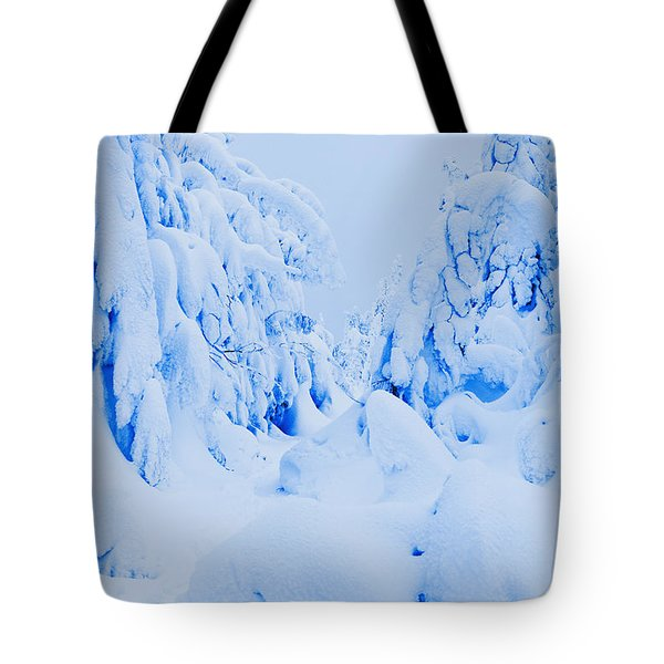 Snow-covered To Vallee Des Fantomes Tote Bag by Yves Marcoux