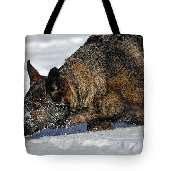 Snow Dog Tote Bag by Karol Livote