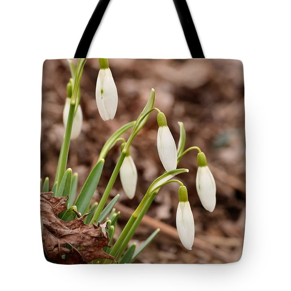 Snow Drops Tote Bag