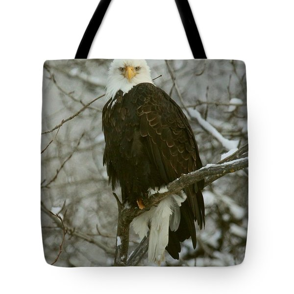 Tote Bag featuring the photograph Snow Eagle by Myrna Bradshaw