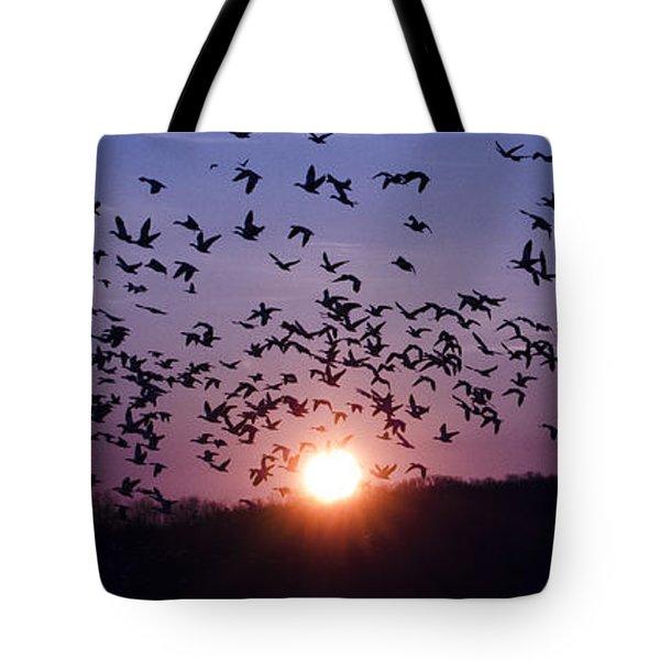 Snow Geese Migrating Tote Bag