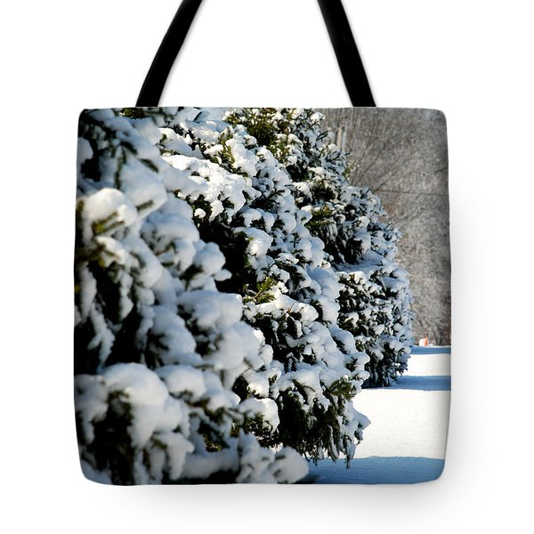 Tote Bag featuring the photograph Snow In The Trees by Mark Dodd