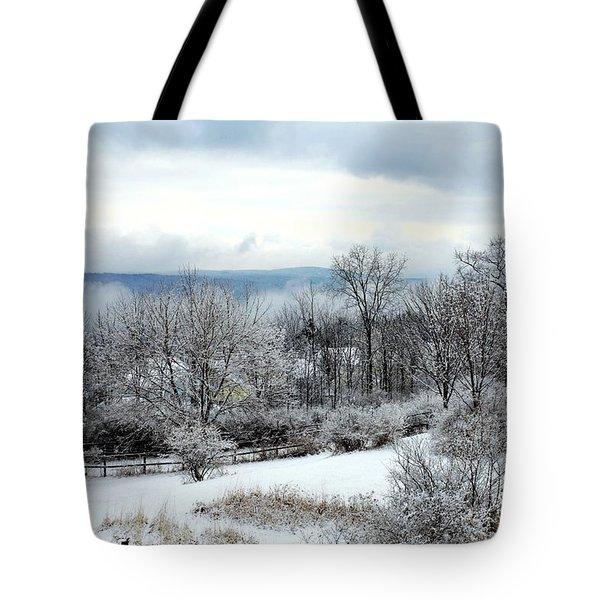 Snow In Winter Ithaca New York Tote Bag by Paul Ge
