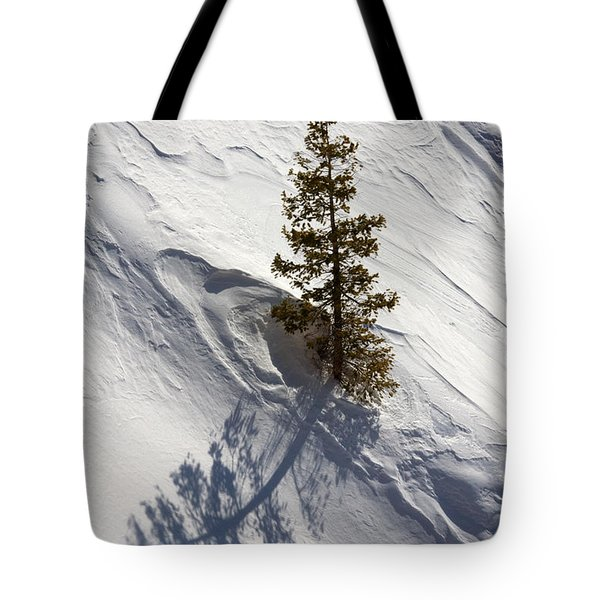 Snow Shadow Tote Bag by Karen Lee Ensley
