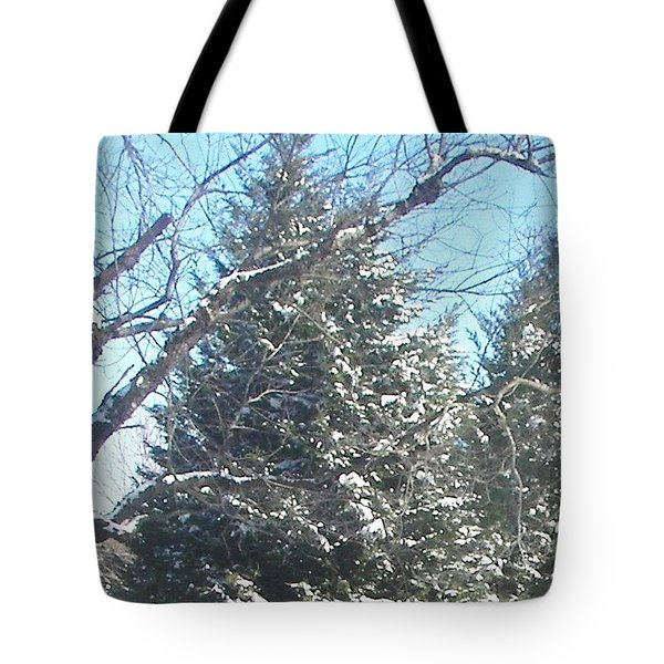 Tote Bag featuring the photograph Snow Sprinkled Pine by Pamela Hyde Wilson