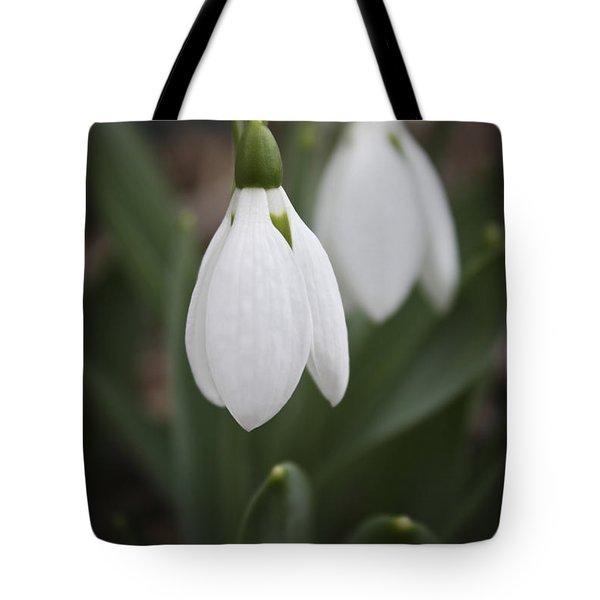 Snowdrop Purity Tote Bag by Teresa Mucha
