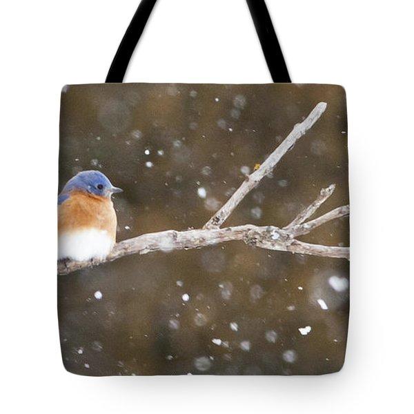 Snowy Bluebird Tote Bag