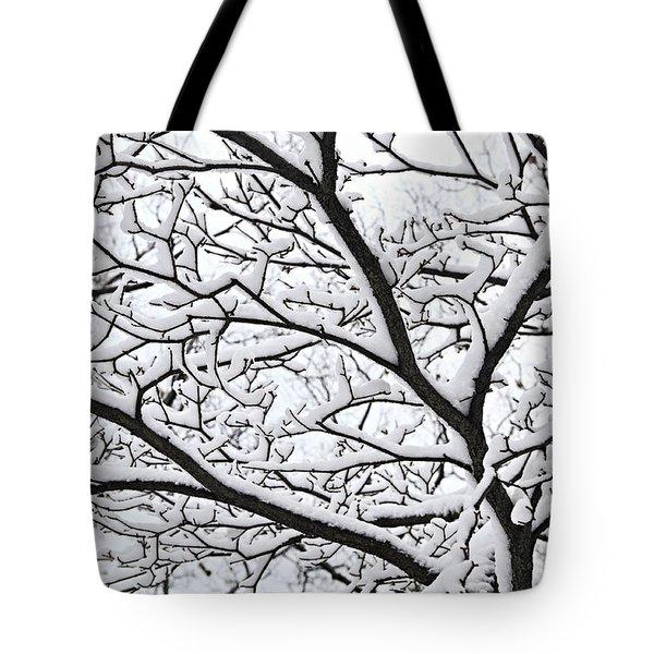 Snowy Branch Tote Bag by Elena Elisseeva