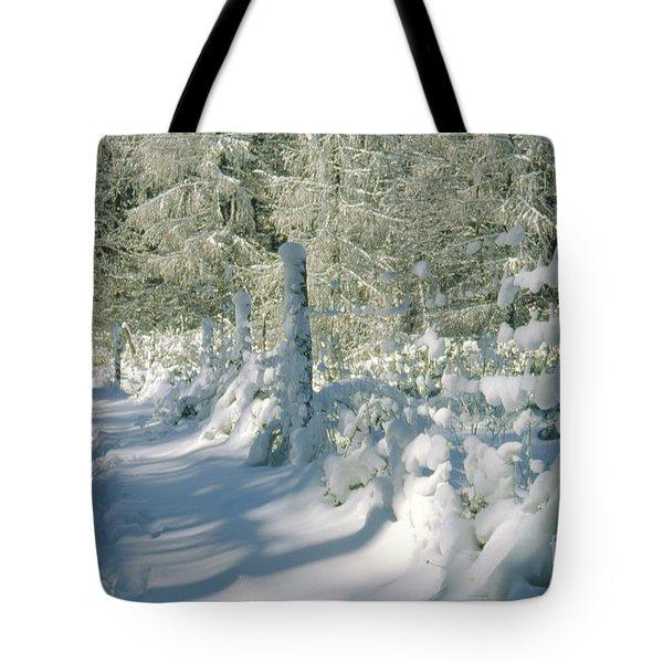 Snowy Footpath In Winter Wonderland Tote Bag by Heiko Koehrer-Wagner