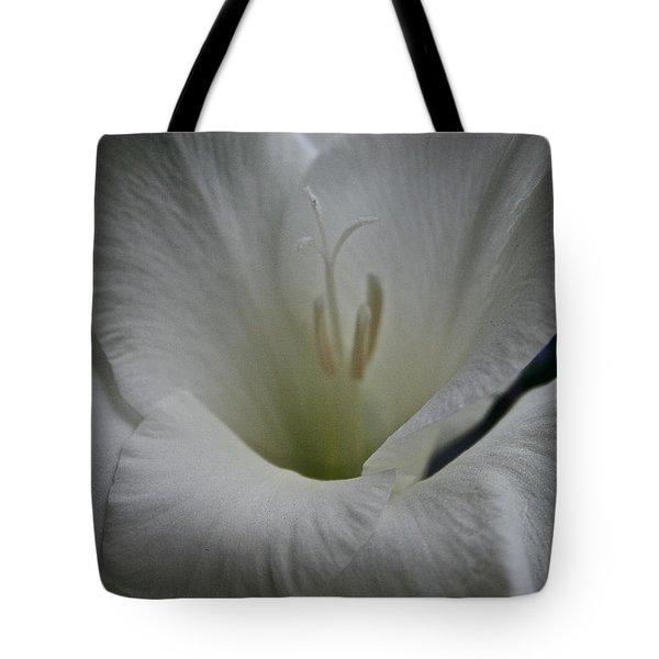 Snowy Gladiolus Tote Bag by Susan Herber