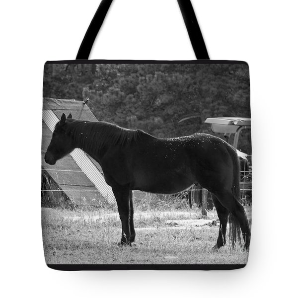 Tote Bag featuring the photograph Snowy Horse by Angelique Olin