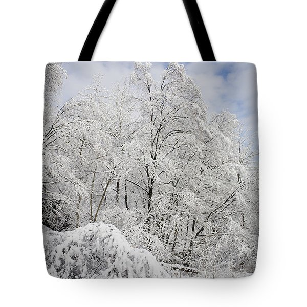 Snowy Landscape Tote Bag by Len Rue Jr and Photo Researchers