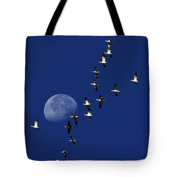 Snowy Moon Tote Bag by Tony Beck