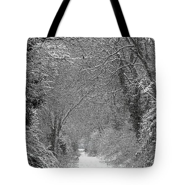 Snowy Path Tote Bag by Linsey Williams