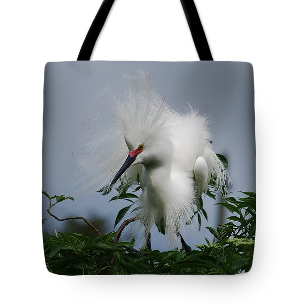 Snowy Stand Off Tote Bag by Skip Willits