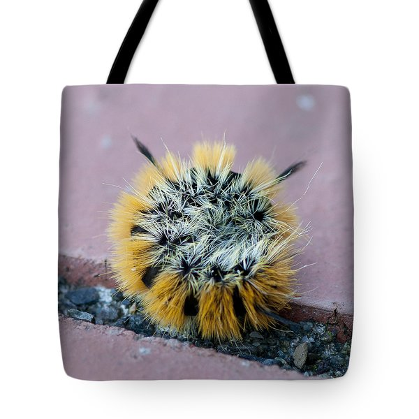 Snug As A Bug Tote Bag by Betty Depee