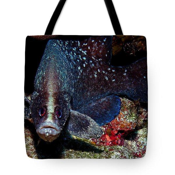 Soapfish Tote Bag