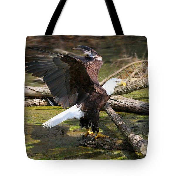 Tote Bag featuring the photograph Soaring Eagle by Elizabeth Winter