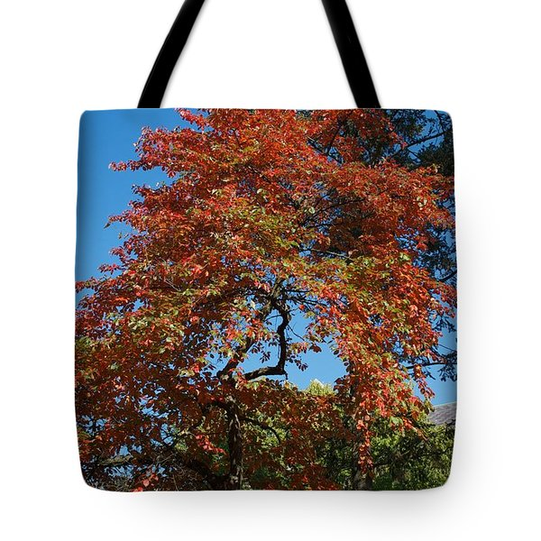 Tote Bag featuring the photograph Soaring Fall by Joseph Yarbrough