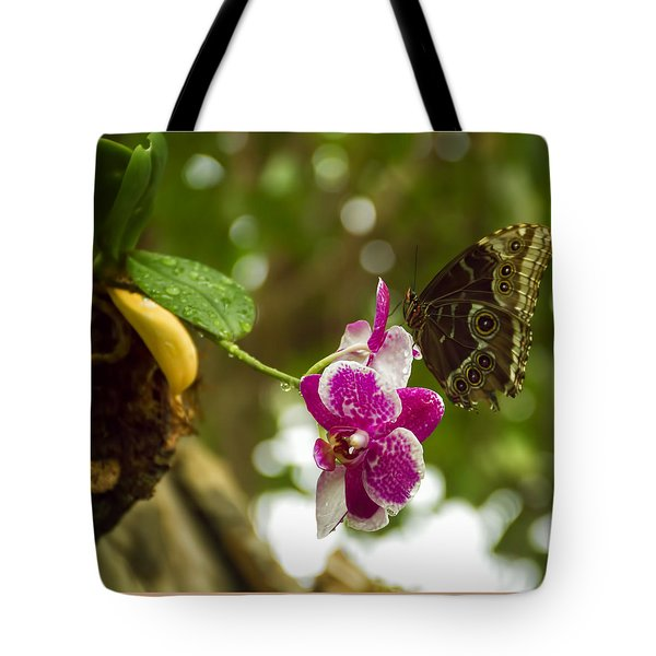 Soaring Orchid Tote Bag