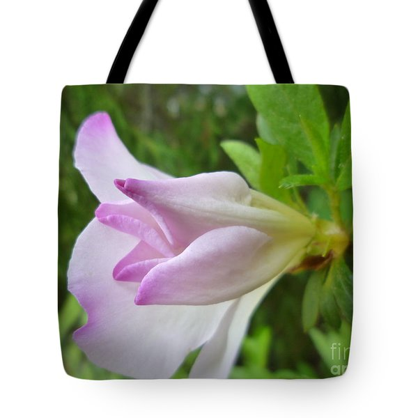 Tote Bag featuring the photograph Soft Pink Azalea by Renee Trenholm