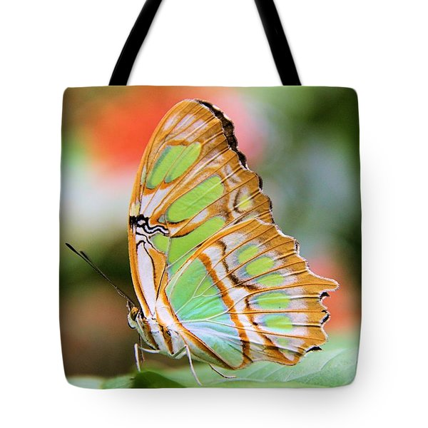 Solitude On A Summer Morning Tote Bag by Elizabeth Budd
