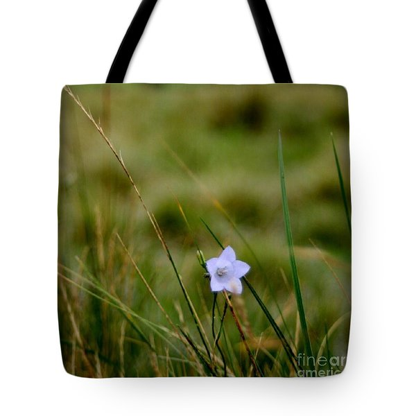 Solo Tote Bag by Isabella F Abbie Shores