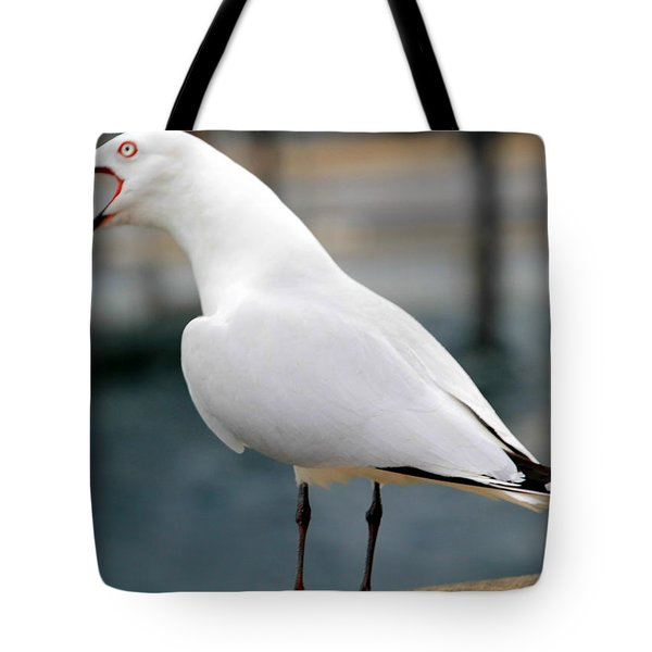 Tote Bag featuring the photograph Something To Say by Laurel Talabere